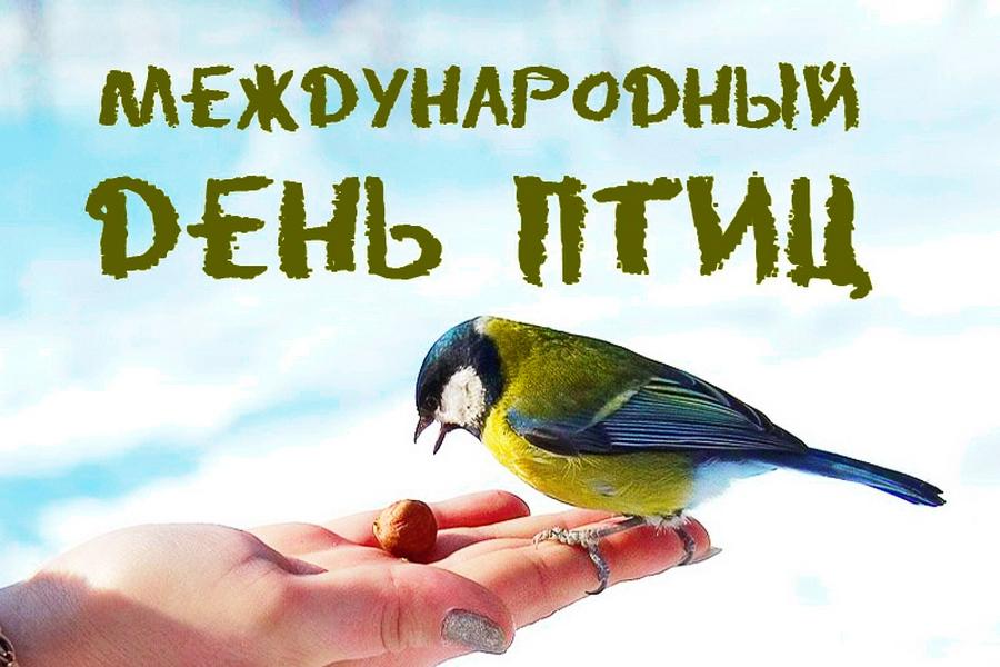 картинки к 1 апреля день птиц отличается других